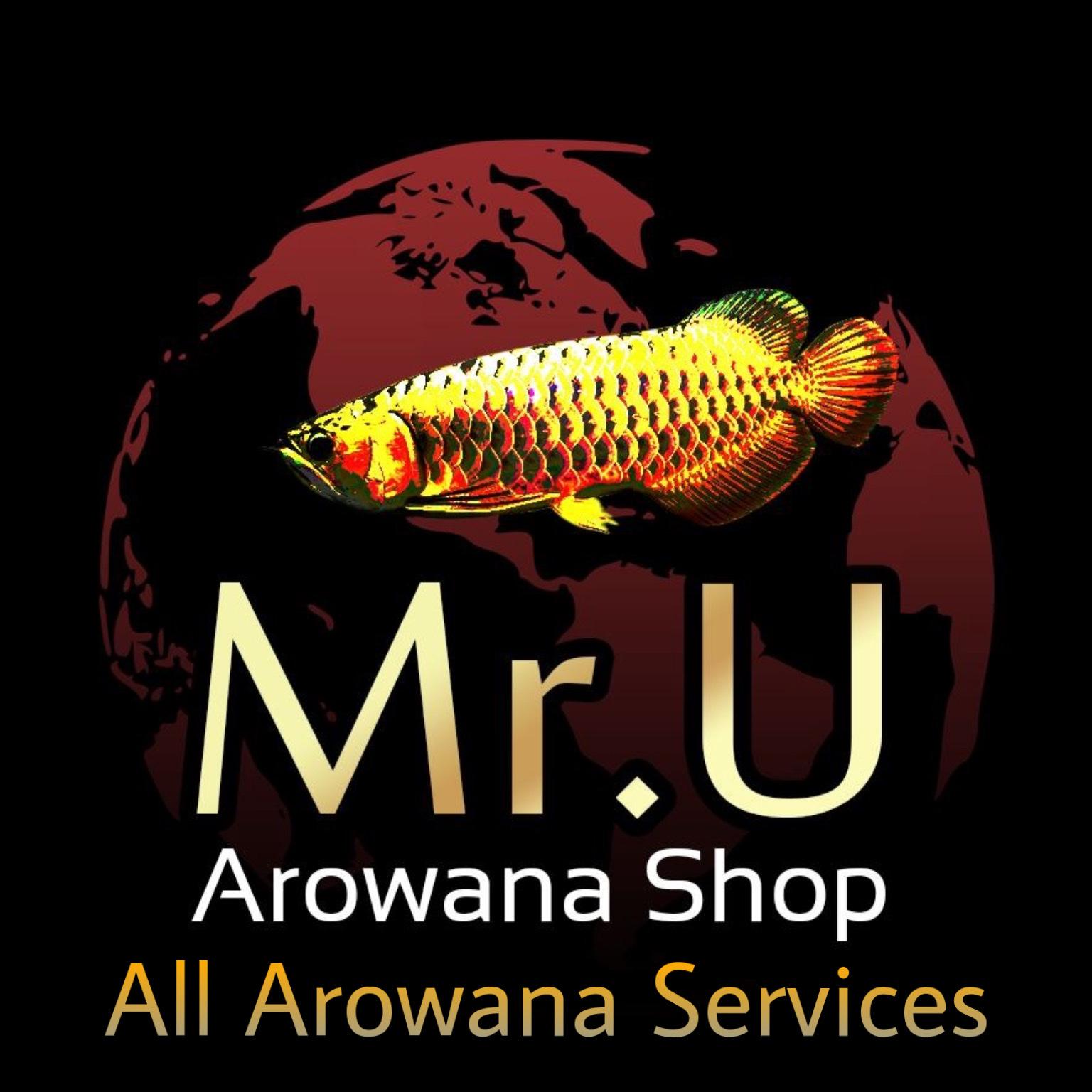 Mr. U Arowana Shop & Services